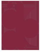 logo_albiano